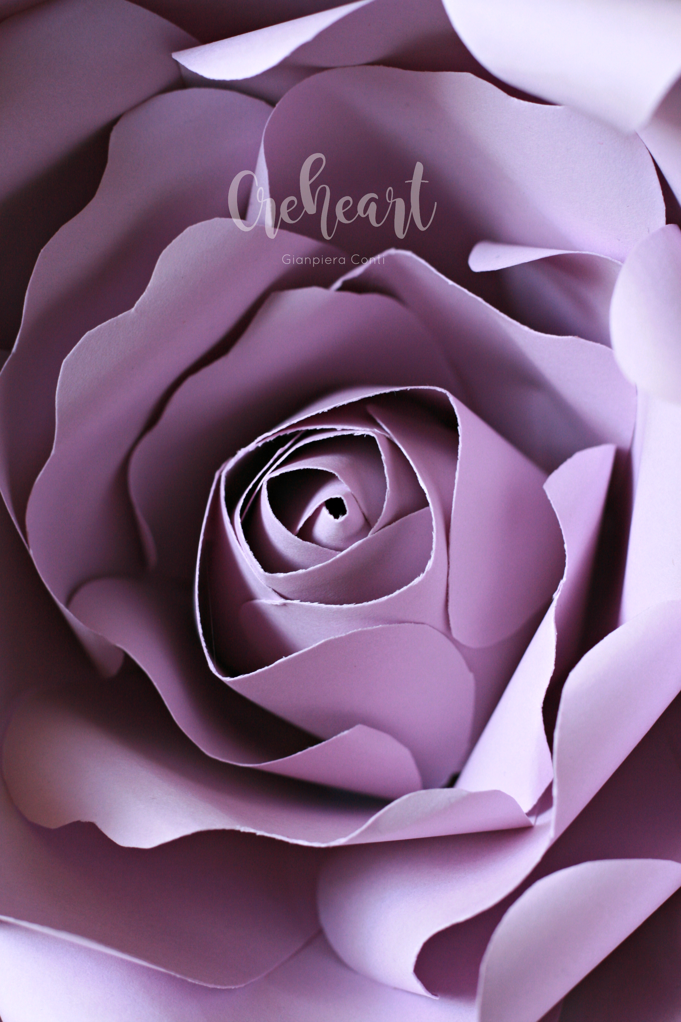 Lilac Giant Rose Creheart.jpg