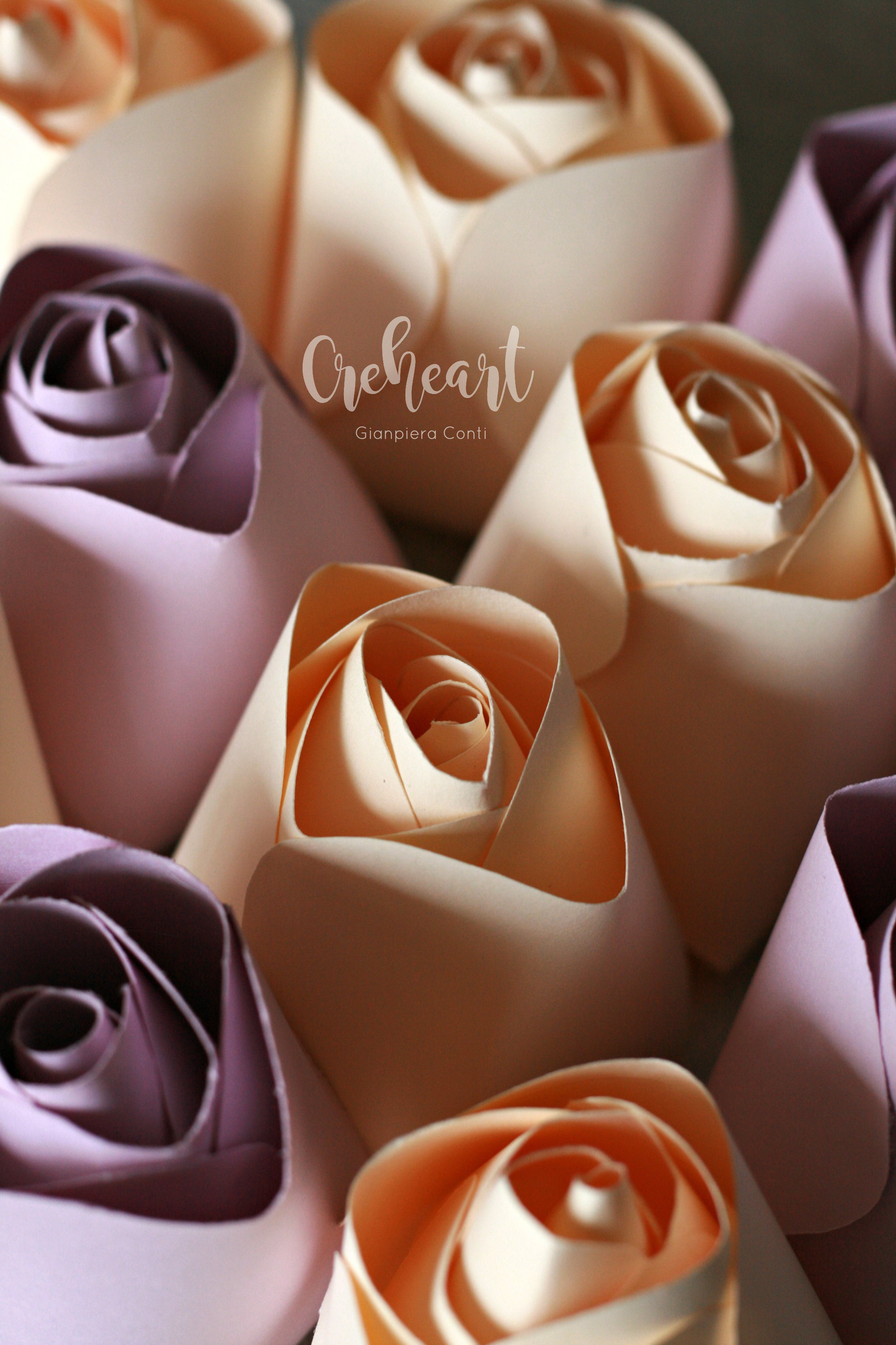 Roses centers Ivory and Purple.jpg