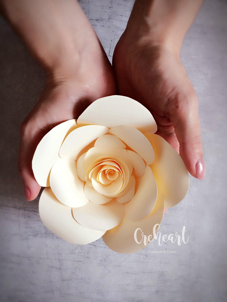 White Flower Creheart.jpg