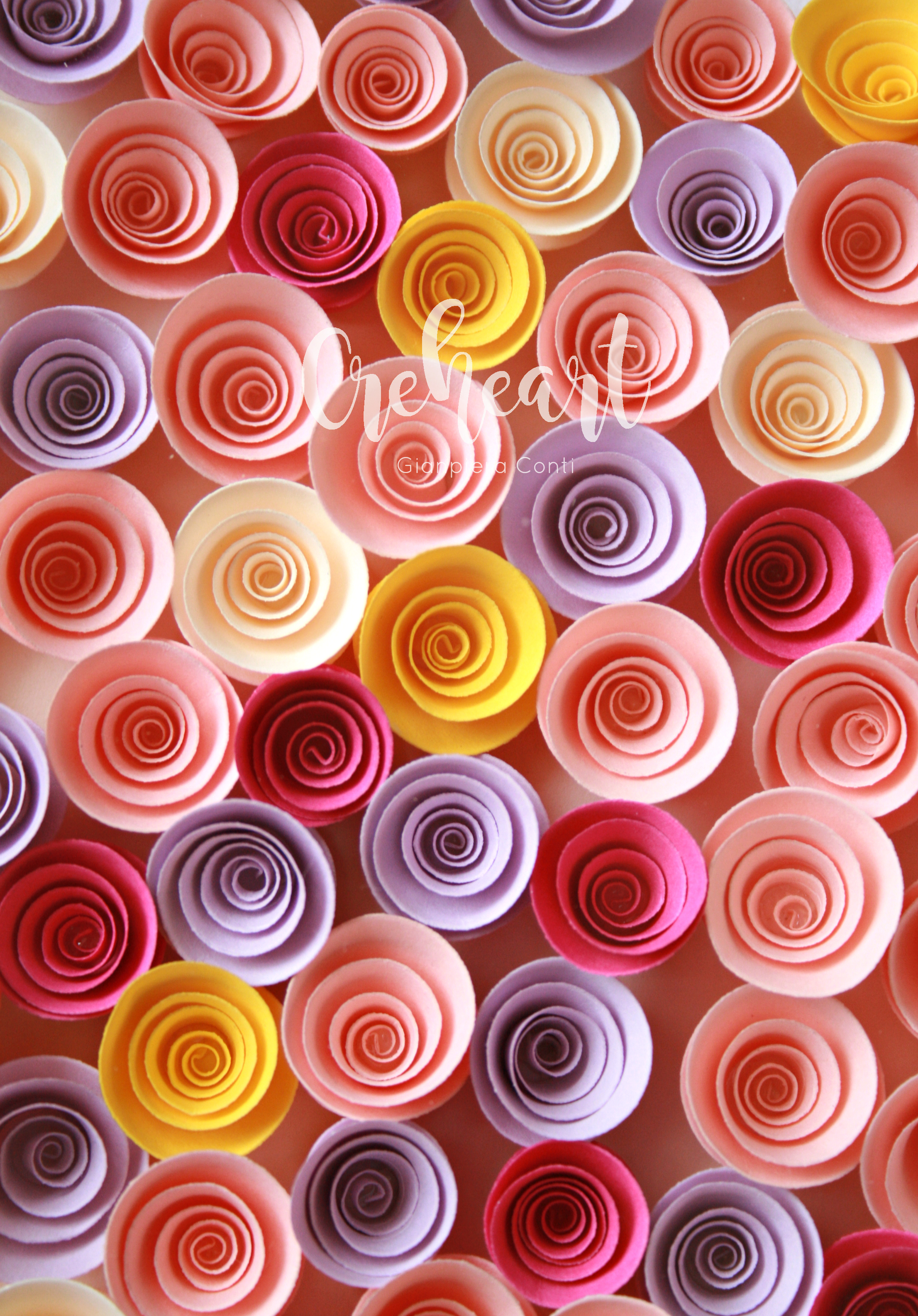 Colorful Blooms closeup.jpg