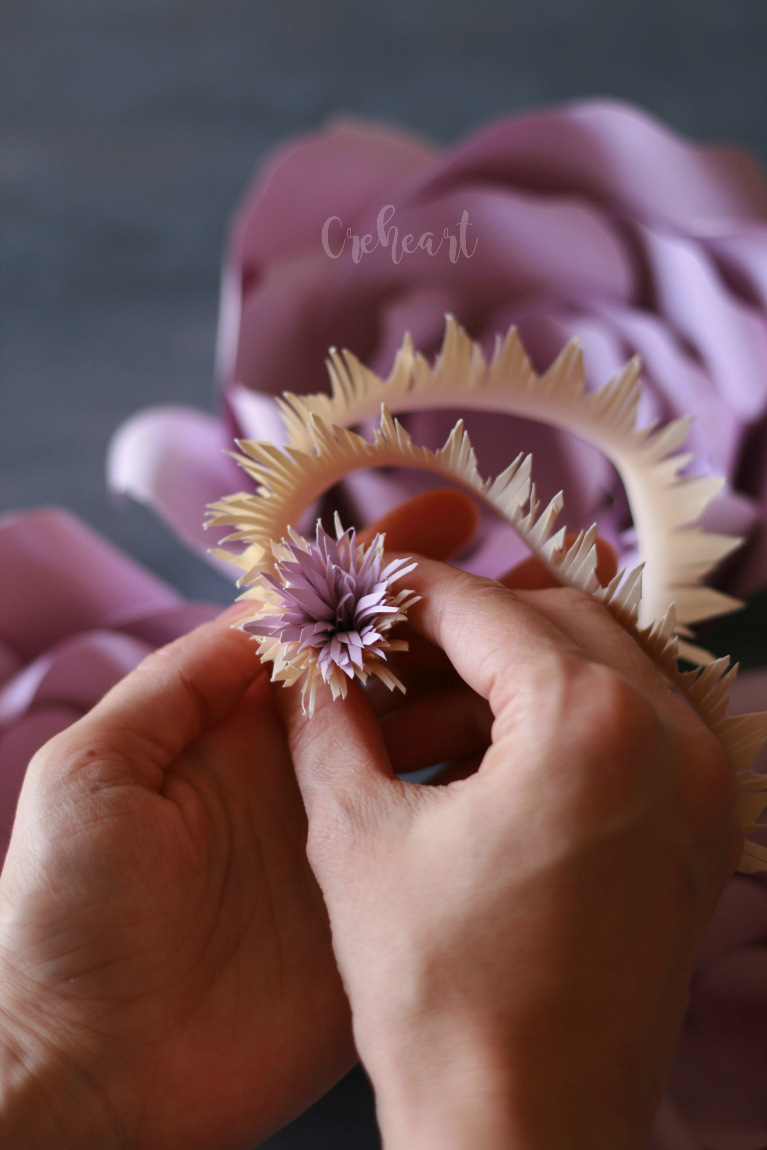 Fiore carciofo.jpg