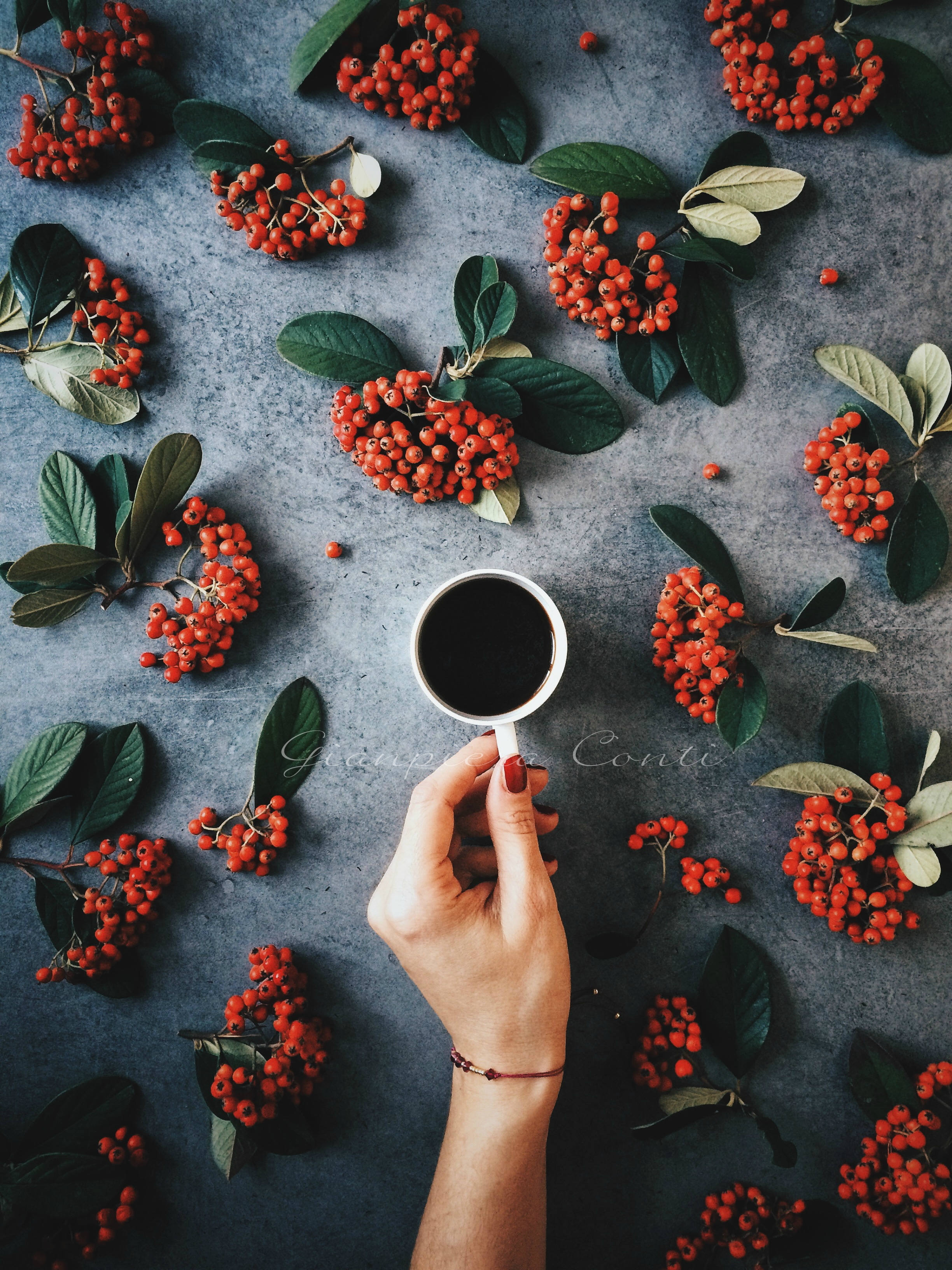 Red berries styling