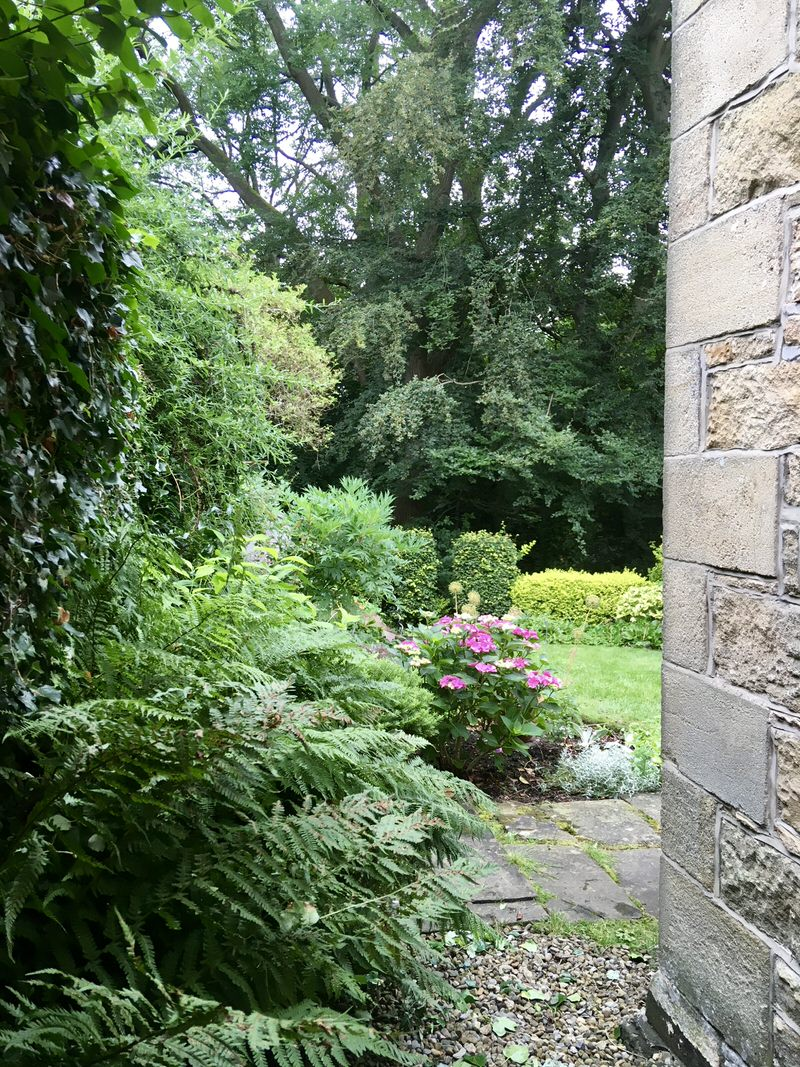 View of the back garden at Croft Terrace