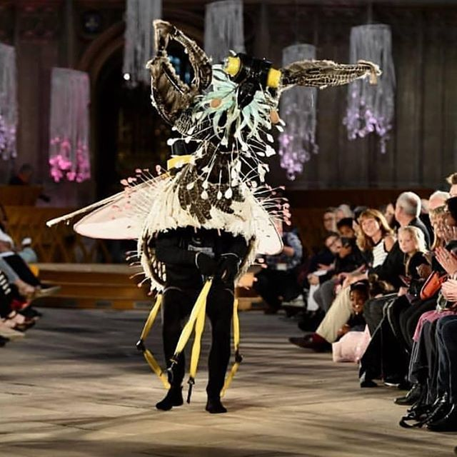 Jack Everetts incredible creation titled; Mantis Lacewing, lit up the catwalk on Friday night.  Jack used his Biomimicry entry in the independent category to voice his support for extinction rebellion. ..amazing, inspiring 1st Place winner. . . . . . . #wearableart #extinctionrebellion #stopecocide  #costumedesign #artist #catwalk #cathedral #gloucestercathedral #bodycreativeart #bodypaint #biomimicry  Chris Heath photography