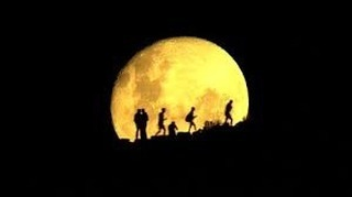 Full Moon at 22° Aquarius on August 15, 2019 at 8:31 am EST  The light of the Leo sun is reflected back to us on the canvas of an Aquarian full moon. All of Leo's unique creative fire comes to consciousness in an Aquarian context. Aquarius values the betterment of the whole, ideally through some radically new approach to contemporary concerns. Down with the status quo!  The invitation here is to grok how shining our own radiance can be the new approach the collective needs for positive transformation. This could be as simple as true, authentic presence. Among the challenges facing our world today is that of dissociation, fleeing reality for screens, dreams and other altered states. How radical it would be if each of us came fully into ourselves and the spaces we inhabit to engage completely with our communities! Drop in, tune in and illuminate the world around you. Be your own luminary.