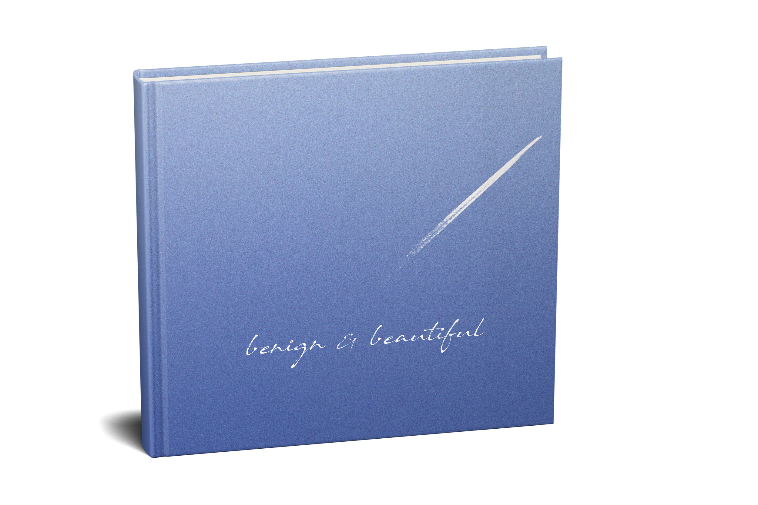 Benign and Beautiful.  A book to celebrate 10 years of Music Alive