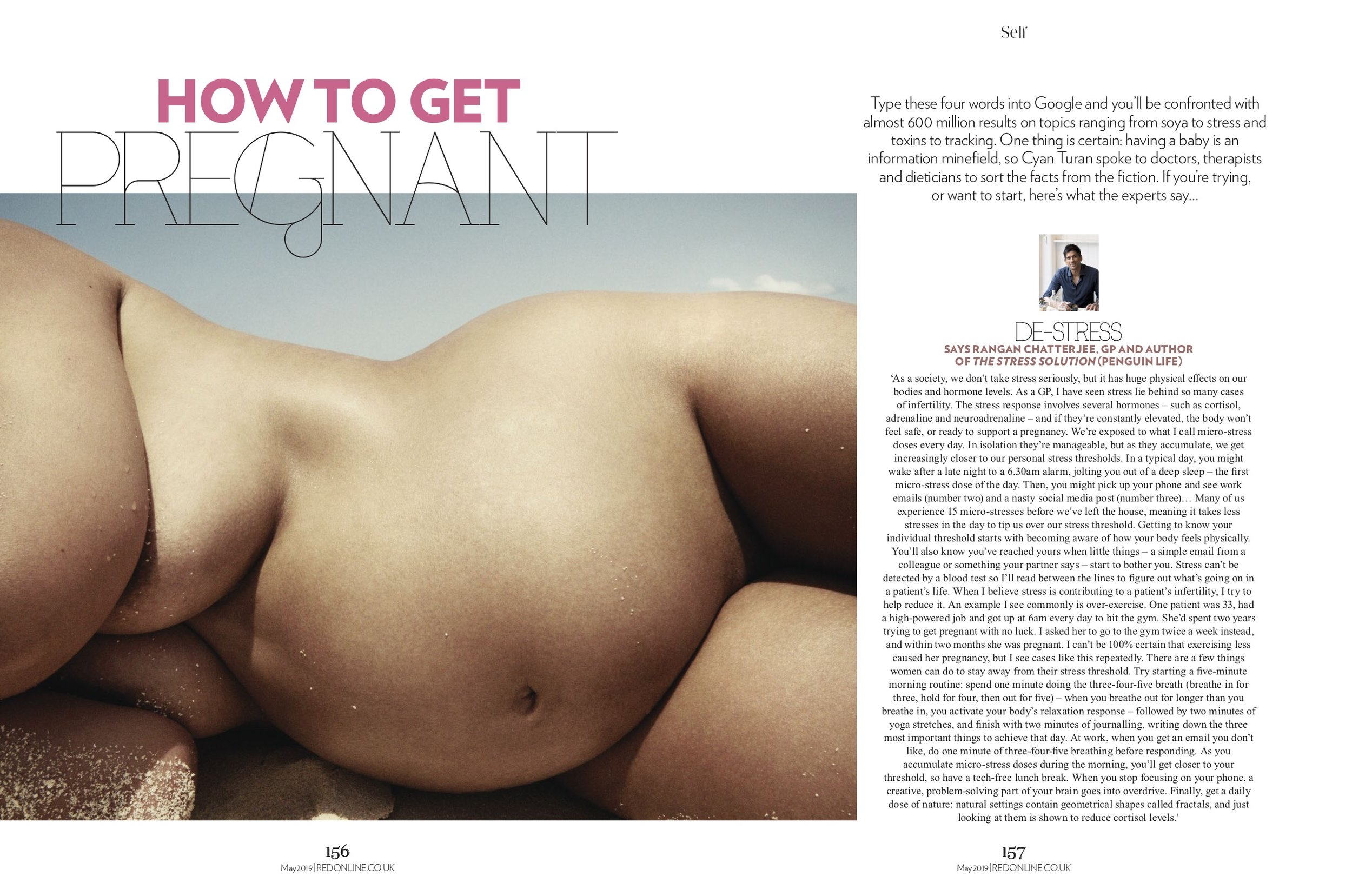Self How to get Pregnant (PDF Spread) (2).jpg