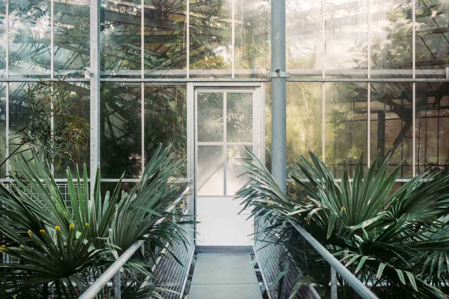 Greenhouse-Door.jpg