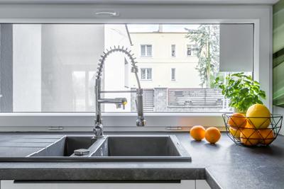 kitchen sink.png