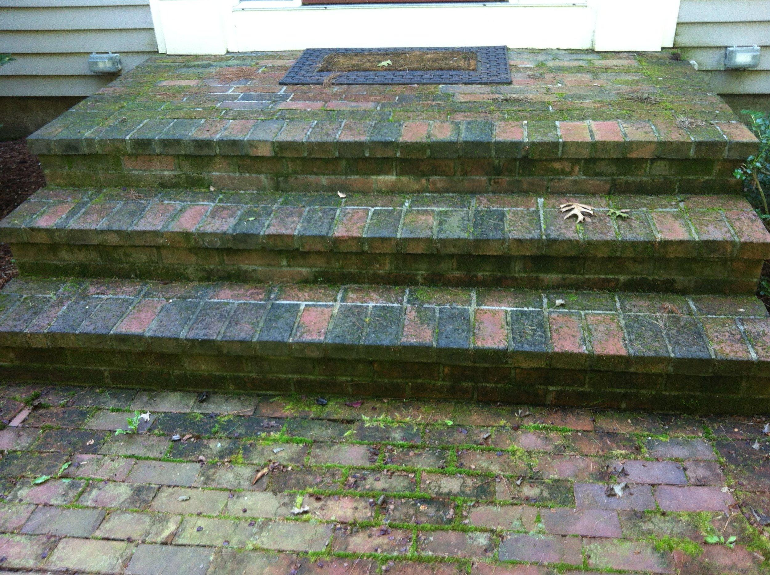 Wellesley MA Front Step Before 1.jpg