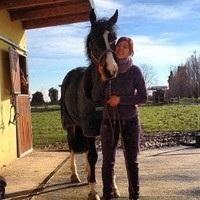 Barbara Delvescovo, DVM - Large Animal Medicine Resident, Cornell University College of Veterinary Medicine
