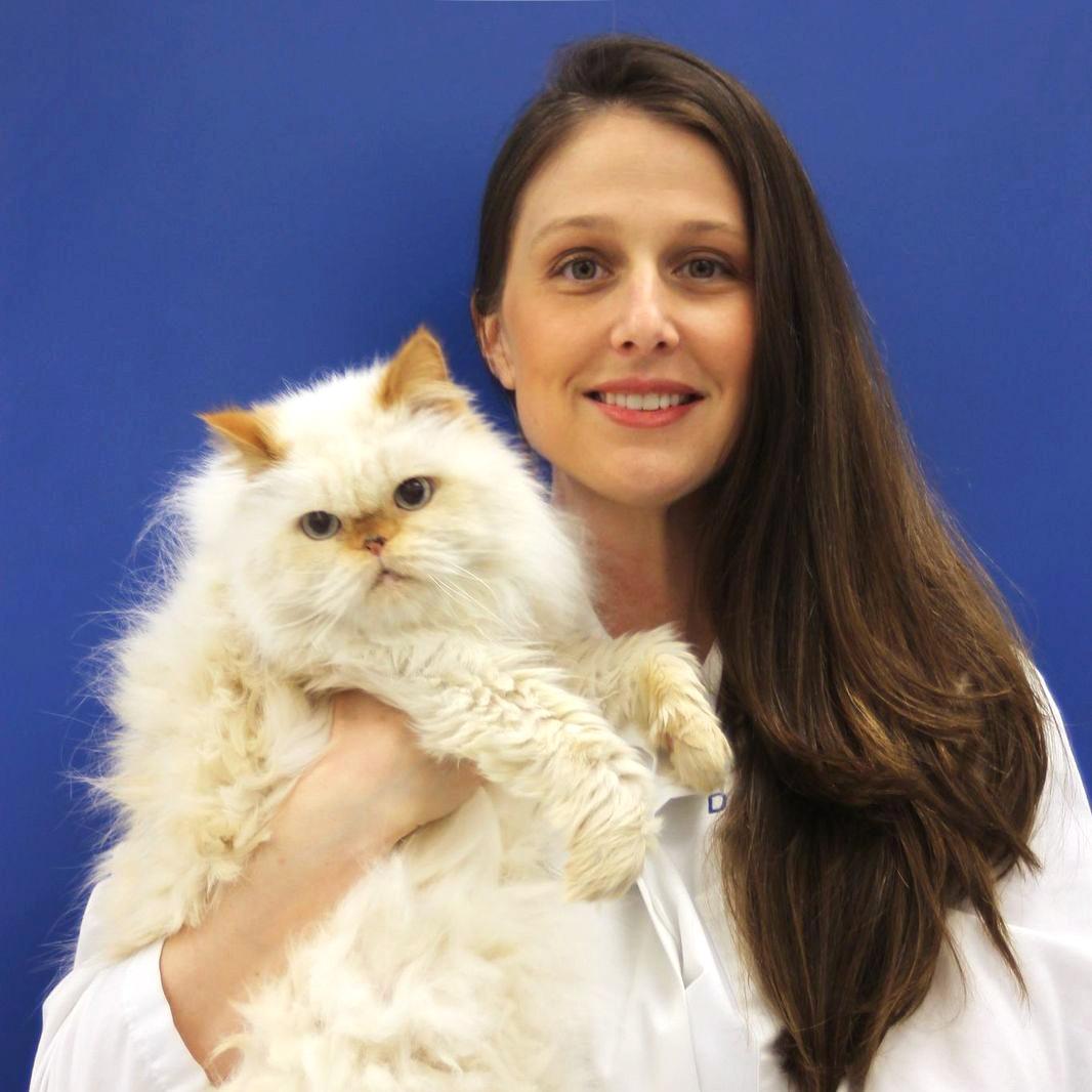 Carole Richards, DVM - Co-owner of Caring Hands Animal Hospital of Merrifield