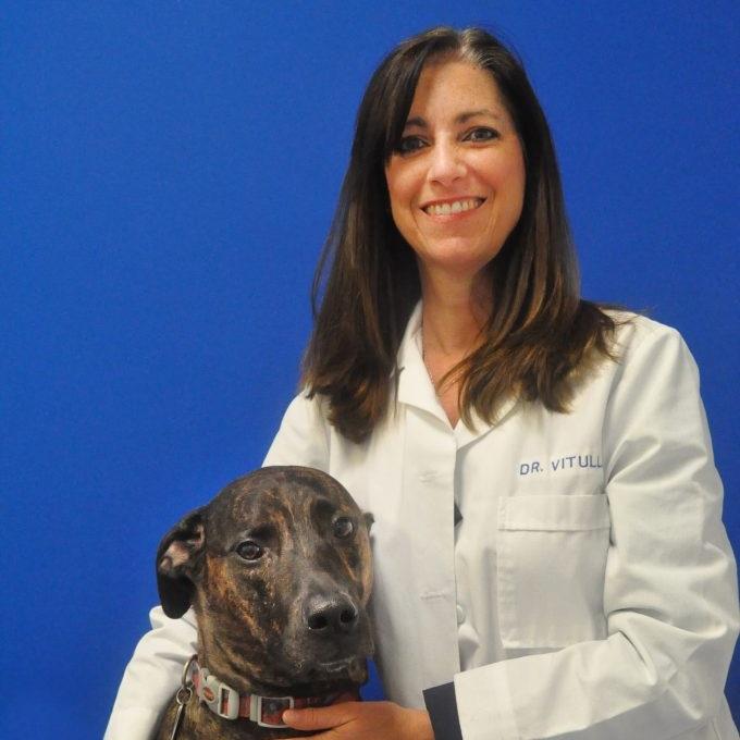 Michelle Vitulli - Founder & Owner, Caring Hands Animal Hospital, Inc.