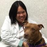 Kristi Yee, DVM - Field Veterinarian, Nationwide DVM