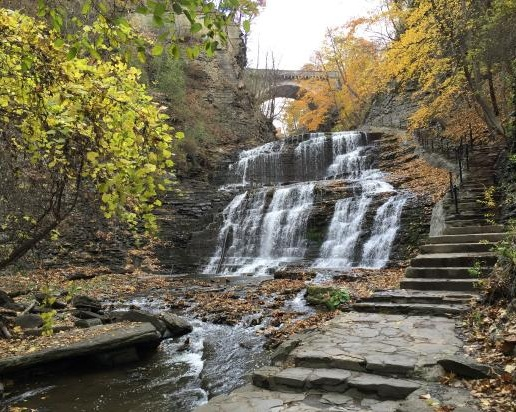 Cascadilla Falls - A 20-foot waterfall with multiple cascades and access points right in the heart of Collegetown. You can grab a coffee at Collegetown Bagels before heading down the stairs alongside this beautiful scenery on your way to campus.