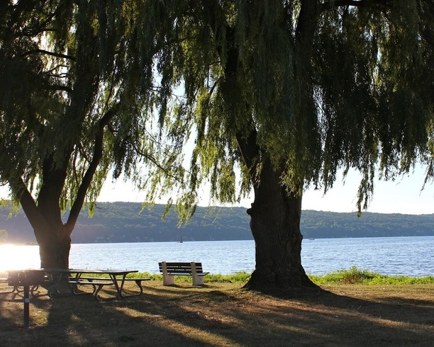 Stewart Park - Sit back, relax, and enjoy the view of Cayuga Lake!