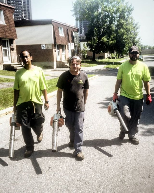 Straight outta Meadowlands.  #ottawa #ottawalife #ottcity #myottawa #613 #yow #lawncare #landscaping #hardwork #dailygrind #gng #summer #tuesday #crew