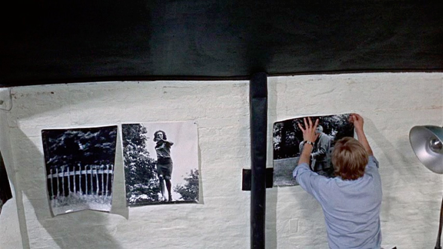 Thomas places photos in a series. Antonioni photographs him as an unknowing part of the series.