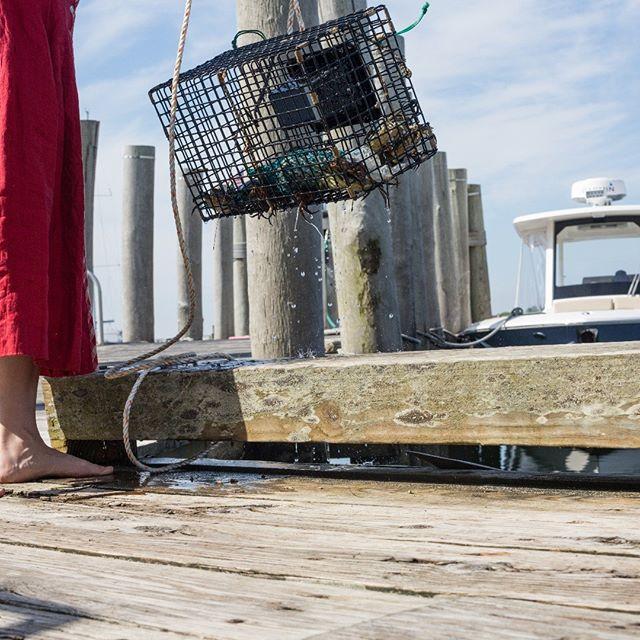 © Lisa Vollmer. A Self-Portrait on Martha's Vineyard. 2019 : : #marthasvineyard #menemsha #sea #crab #trap #reddress #ocean #pier #german #american #culturalexchange #culturalheritage #selfportrait #fineartphotography #photography