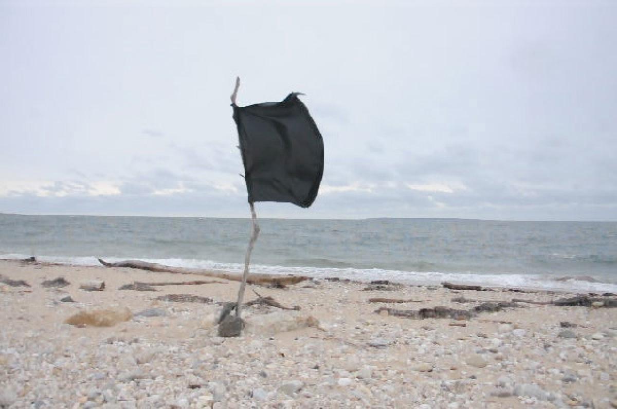 Untitled (flag), 2011