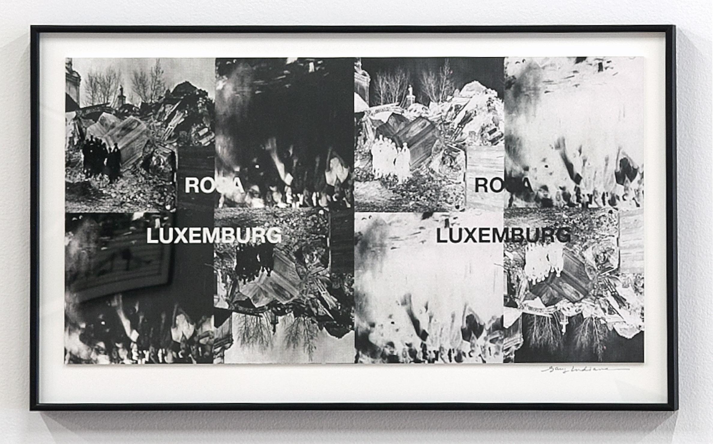 Untitled (Rosa Luxemburg), 2012