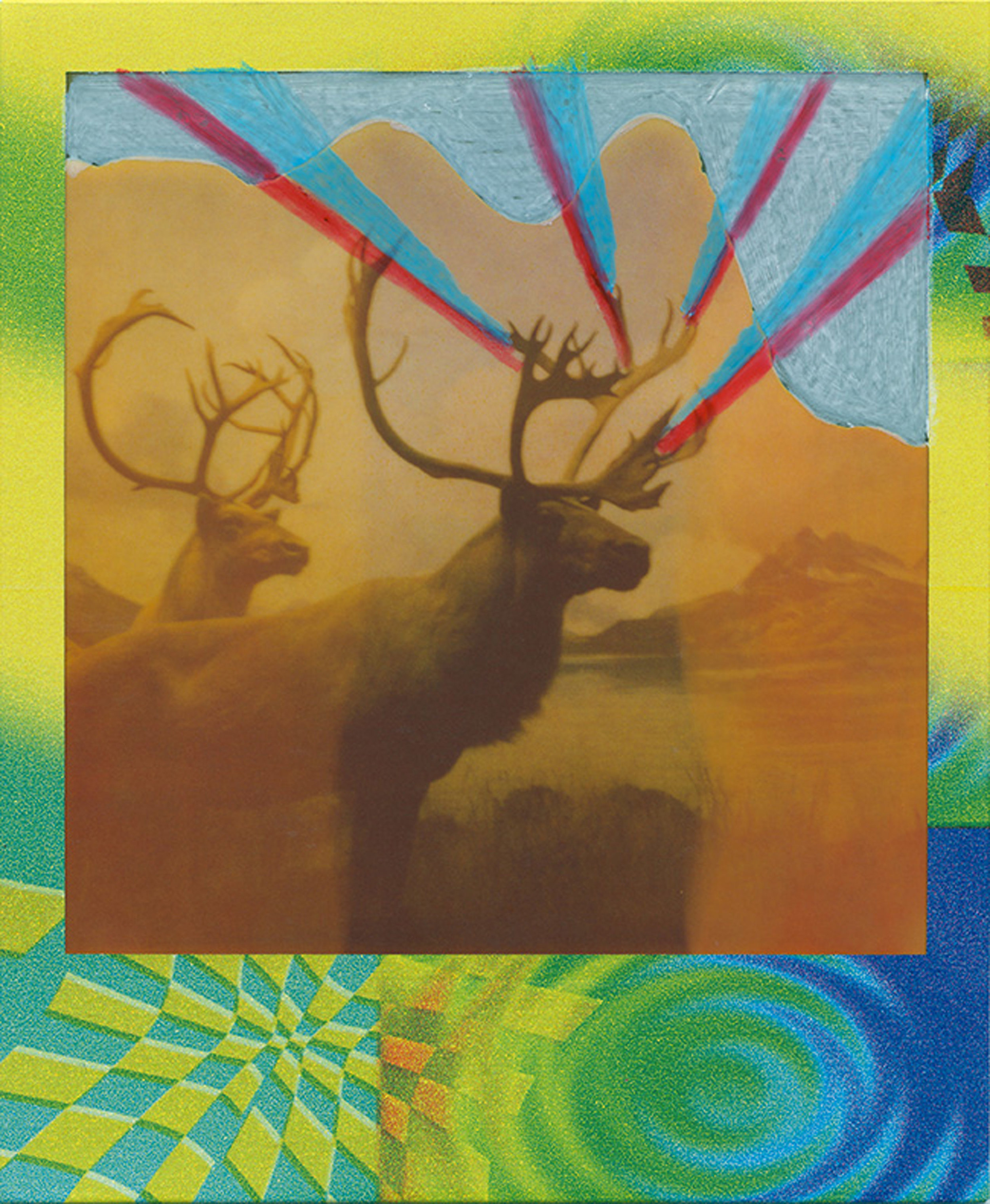 Wilde Sides Series (in collaboration with Mark Spalding): Grant's Caribou, 2008