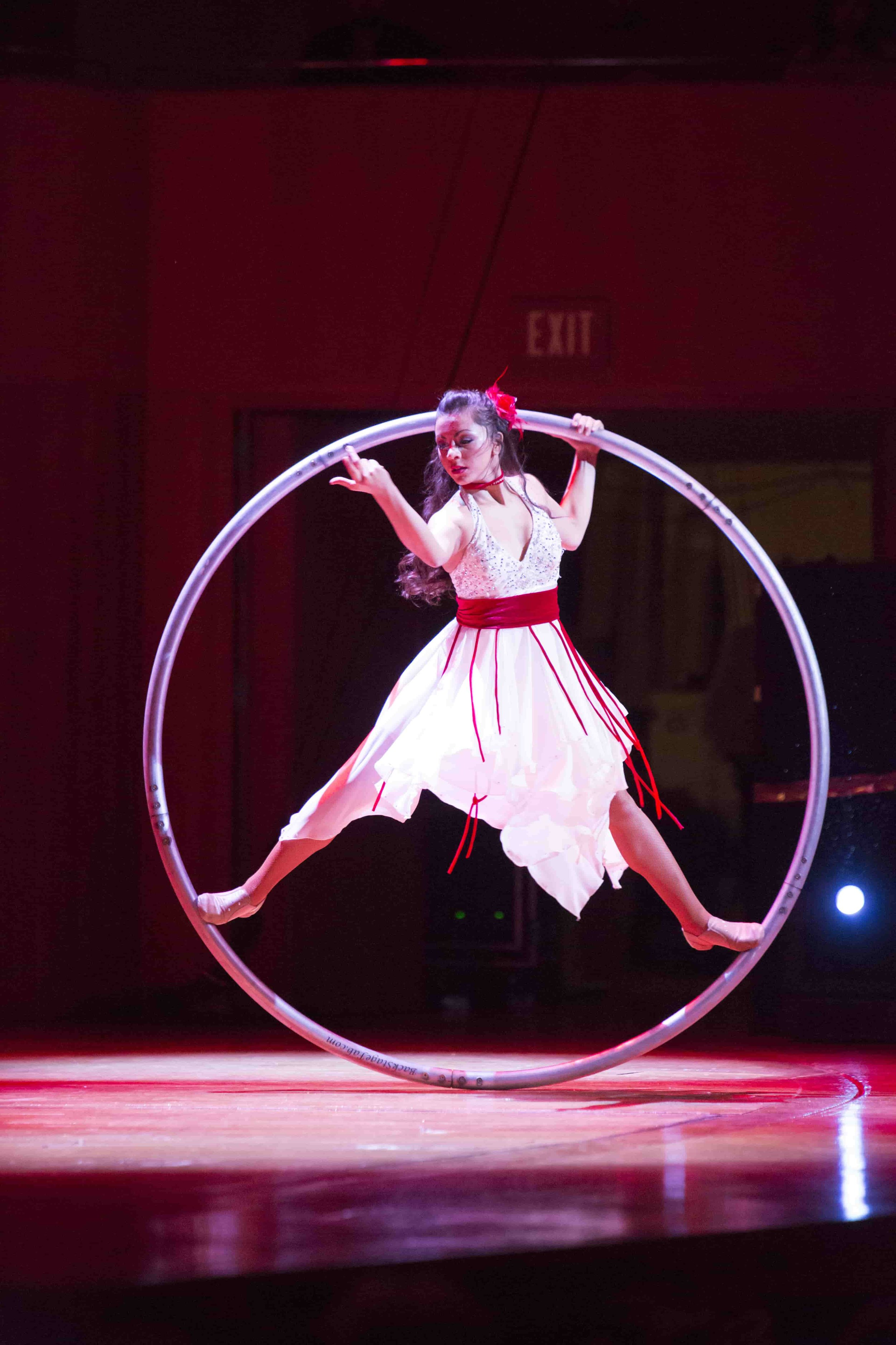 Cyr Wheel 2-min.jpg