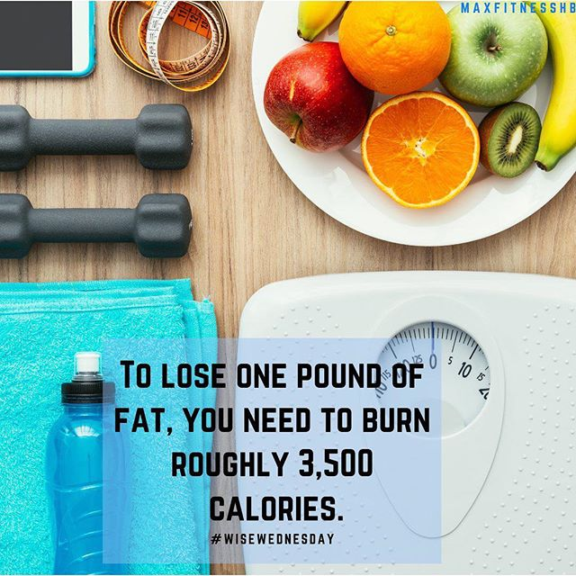 Cutting about 500 to 1,000 calories a day from your typical diet, you can lose about 1 to 2 pounds a week! 😱 : : : #FitFun #HandleIt #ExerciseTime #ExerciseForLife #FitnessPartners #FitnessGoal #FitnessGuru  #FitnessBody #FitnessFirst #FitnessPhysique #FitnessTips  #TrainiacTribe #FitBody #InstaFitness #FitnessBlogger #FitnessAddict #FitnessLover #FitnessDedication #IGFit #InstaFit #Fistagram #GetFit #Exercise #StayFit #Sweat #StrongNotSkinny #FatLoss #WeightLoss #WeightLossJourney
