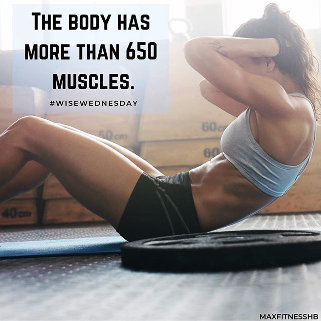 WOW! Lets get to work & build some MORE! 💪🏼🏋🏻♀️ : : : #FitTips #FitFun #HandleIt #ExerciseTime #ExerciseForLife #FitnessPartners #FitnessGoal #FitnessGuru  #FitnessBody #FitnessFirst #FitnessPhysique #FitnessTips  #TrainiacTribe #FitBody #InstaFitness #FitnessBlogger #FitnessAddict #FitnessLover #FitnessDedication #IGFit #InstaFit #Fistagram #GetFit #Exercise #StayFit #Sweat #StrongNotSkinny #FatLoss #WeightLoss #WeightLossJourney