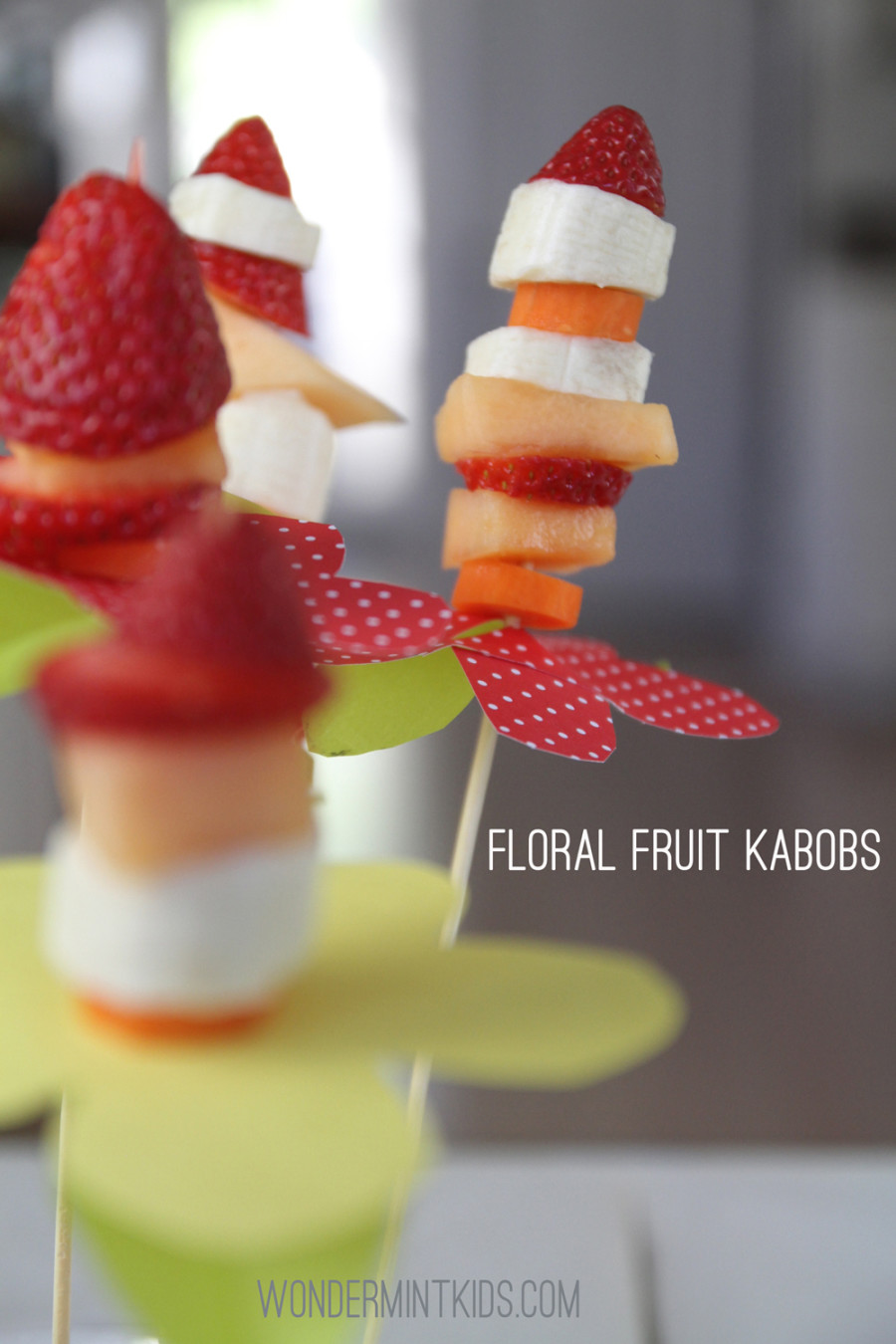 Another view of our kabobs!