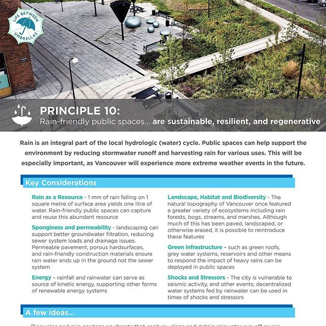 Principle #10 Rain-friendly public spaces… are #sustainable, #resilient, and #regenerative  Public spaces can help support the #environment by restoring natural systems, reducing #stormwater runoff, harvesting #rain for various uses. #LifeBetweenUmbrellas