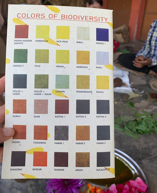 Libro colores.jpg