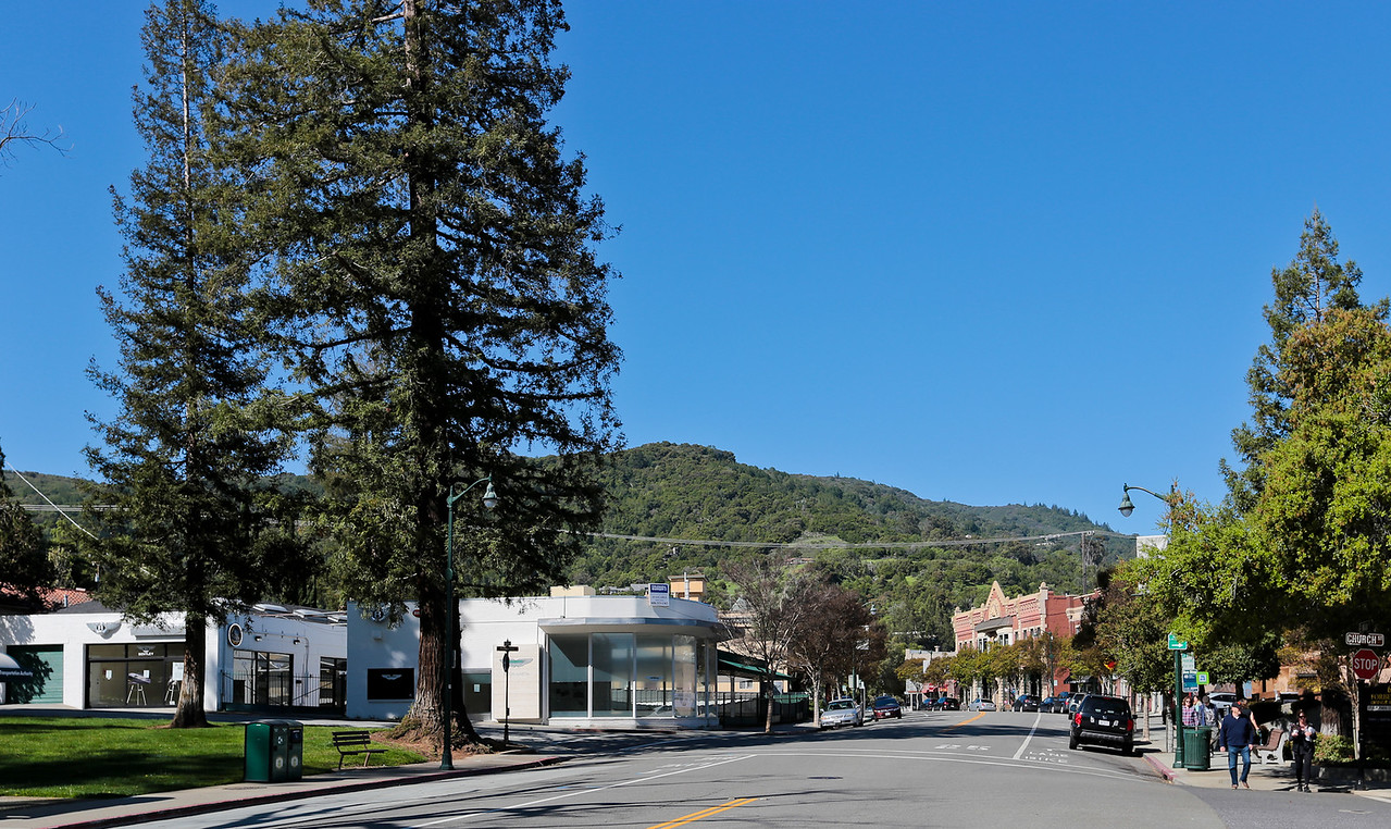 Downtown Los Gatos.jpg