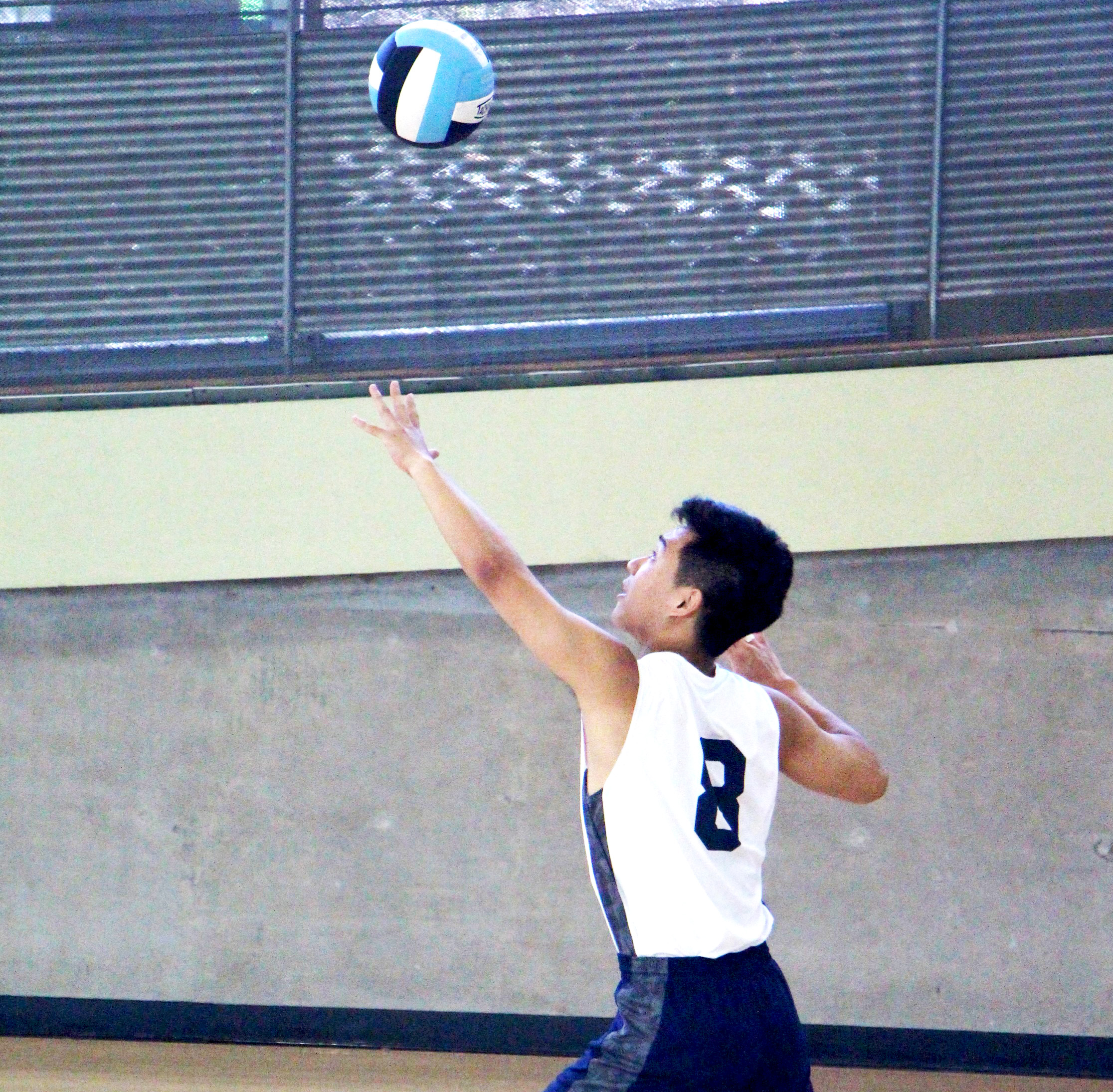 Volleyball boys.jpg