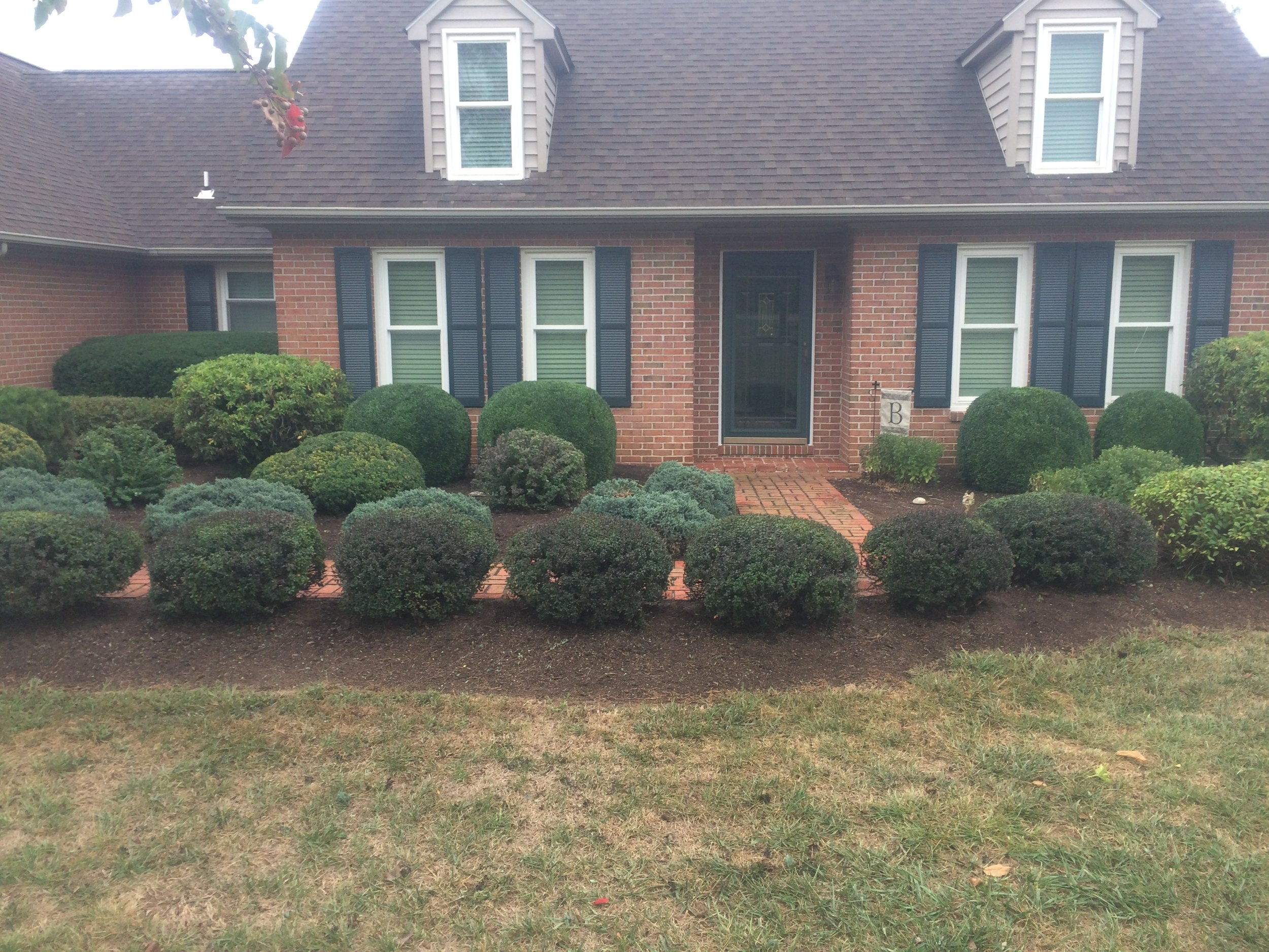 Maintenance - -Shrub Trimming/Pruning-Perennial cutting-Weed control-Ask about our year-round Landscape Plan