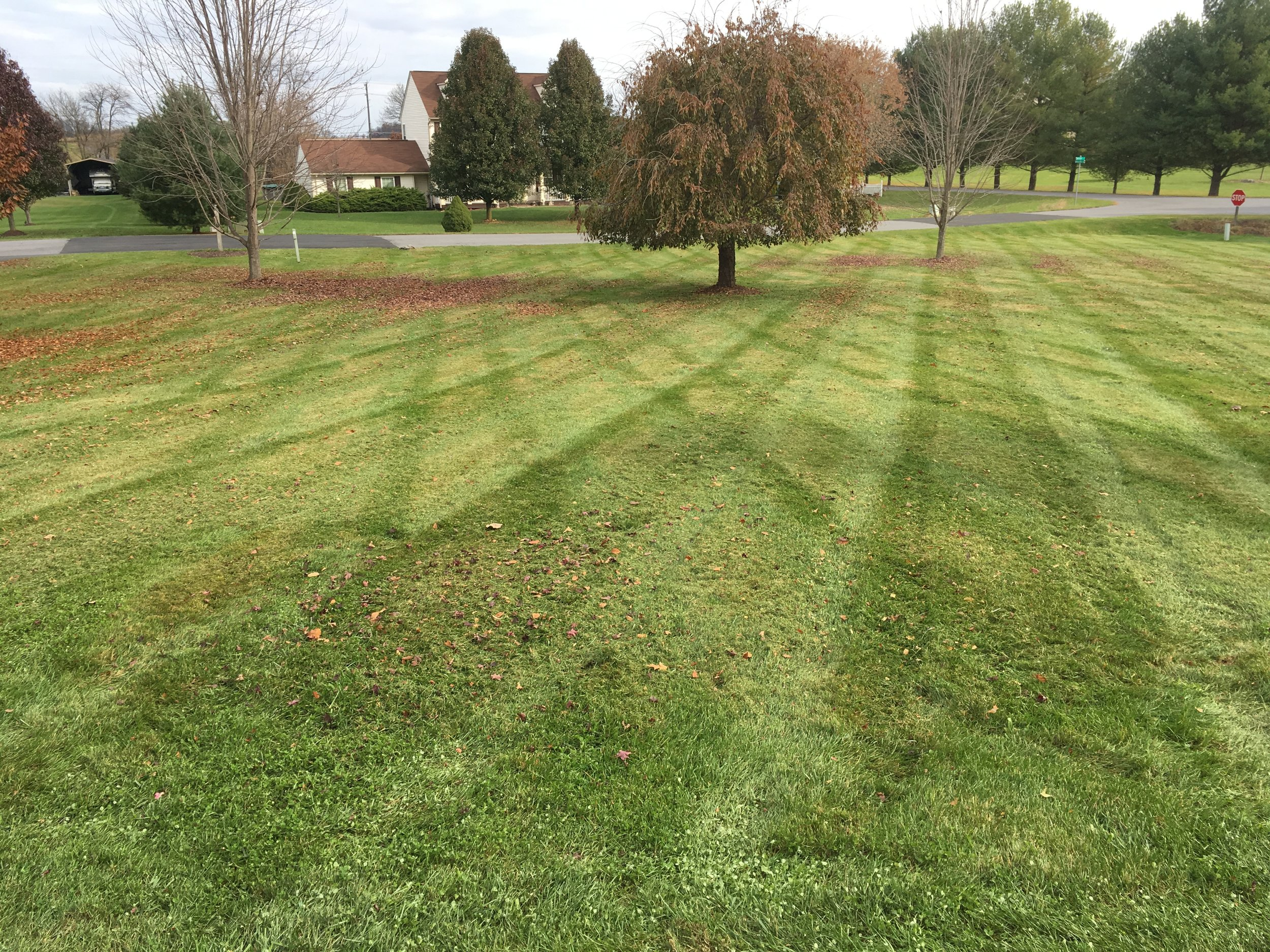 Mowing - -Routine mowing-String trimming-Blowing off sidewalks, decks, driveways etc.-Ask about our year-round Mowing Plan