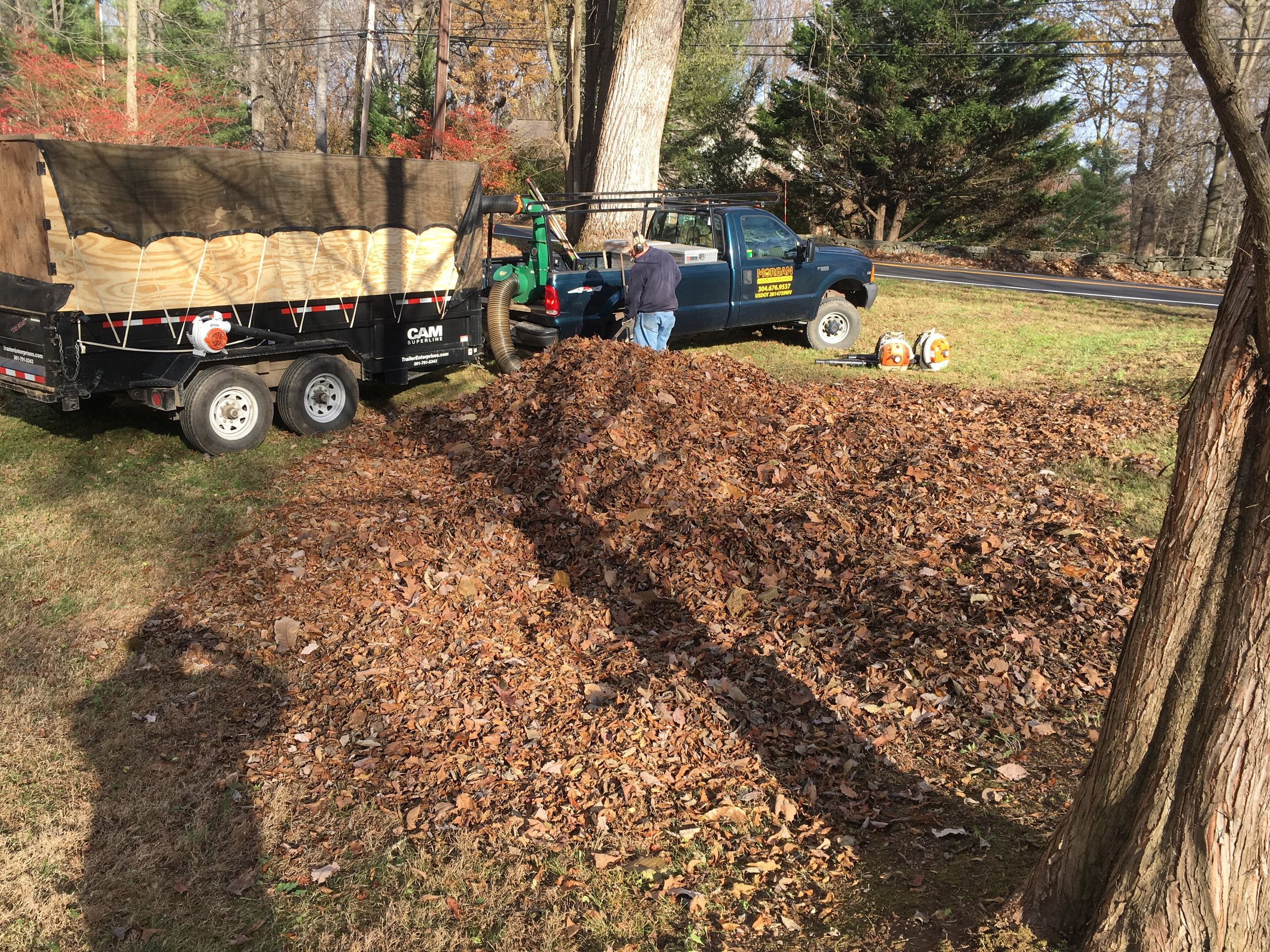 Leaf Removal - -Complete leaf removal-All leaves get recycled for compost and re-use