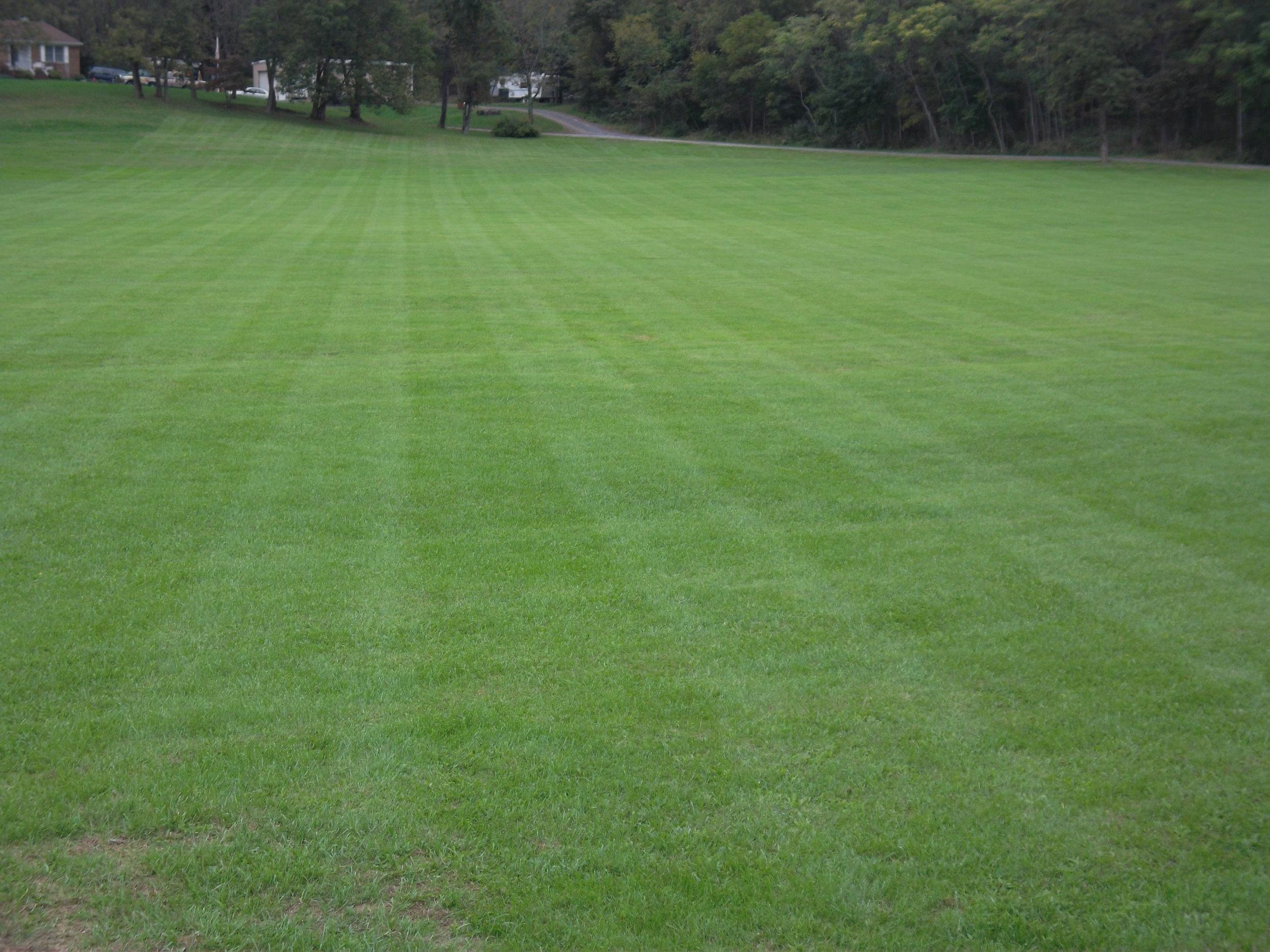 dads field (3).JPG