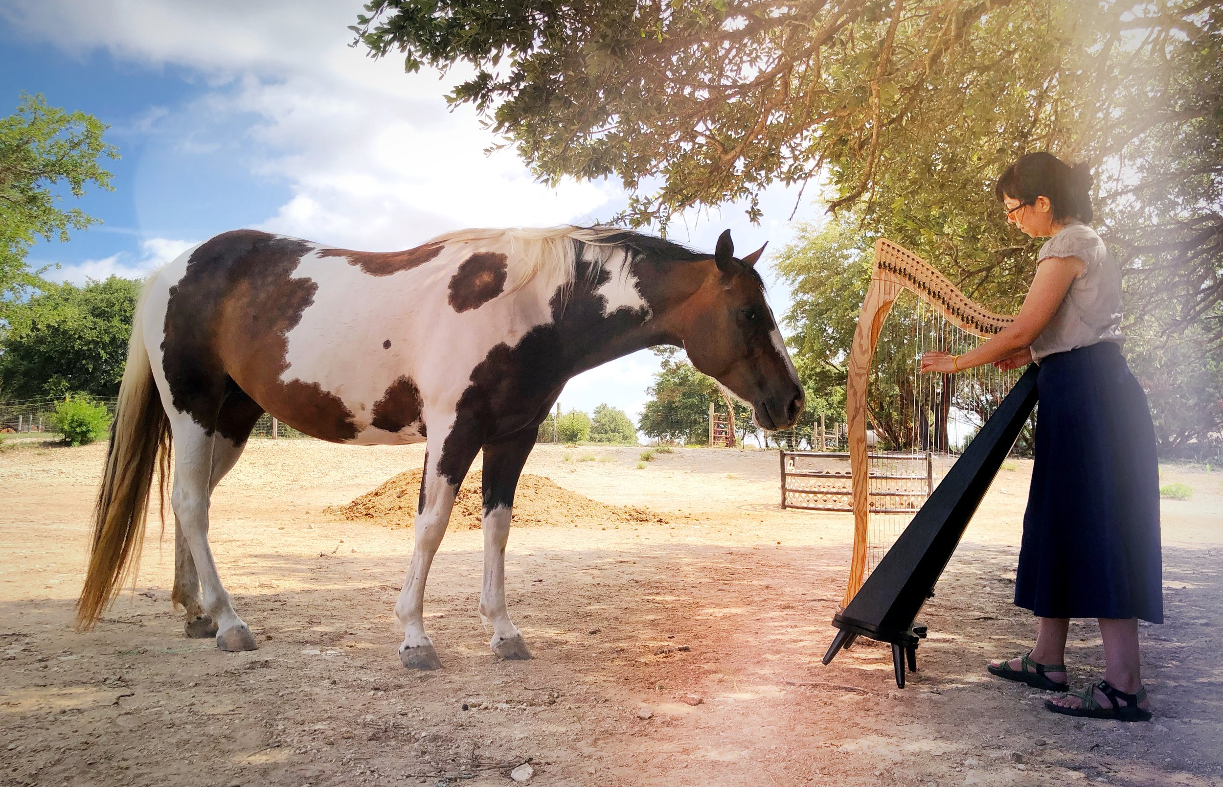 Connecting inward through sound - A space of deep listening in the setting of a peaceful horse ranch.