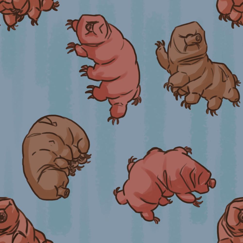 tardigrade.png
