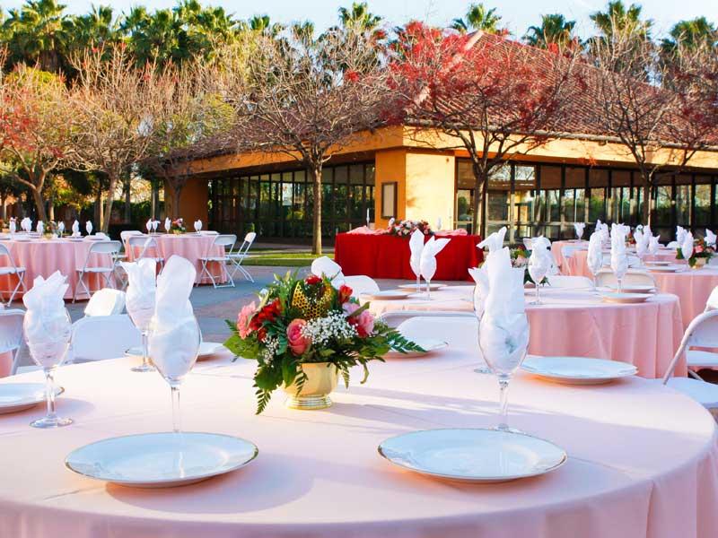 Plaza Reception - Max Occupancy 1,020Lush GardensCatering KitchenWiFi Access