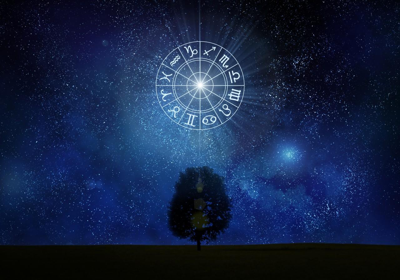 Zodiac Sign Top or Bottom.jpg