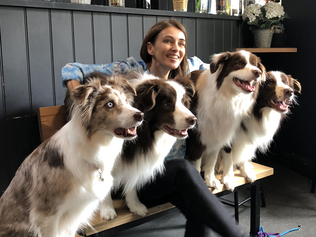Bring Your Dog to Work Day - June 21 - Dr Katrina Warren and the Wonderdogs will bring tricks, tips, and a lot of furry fun to your workplace