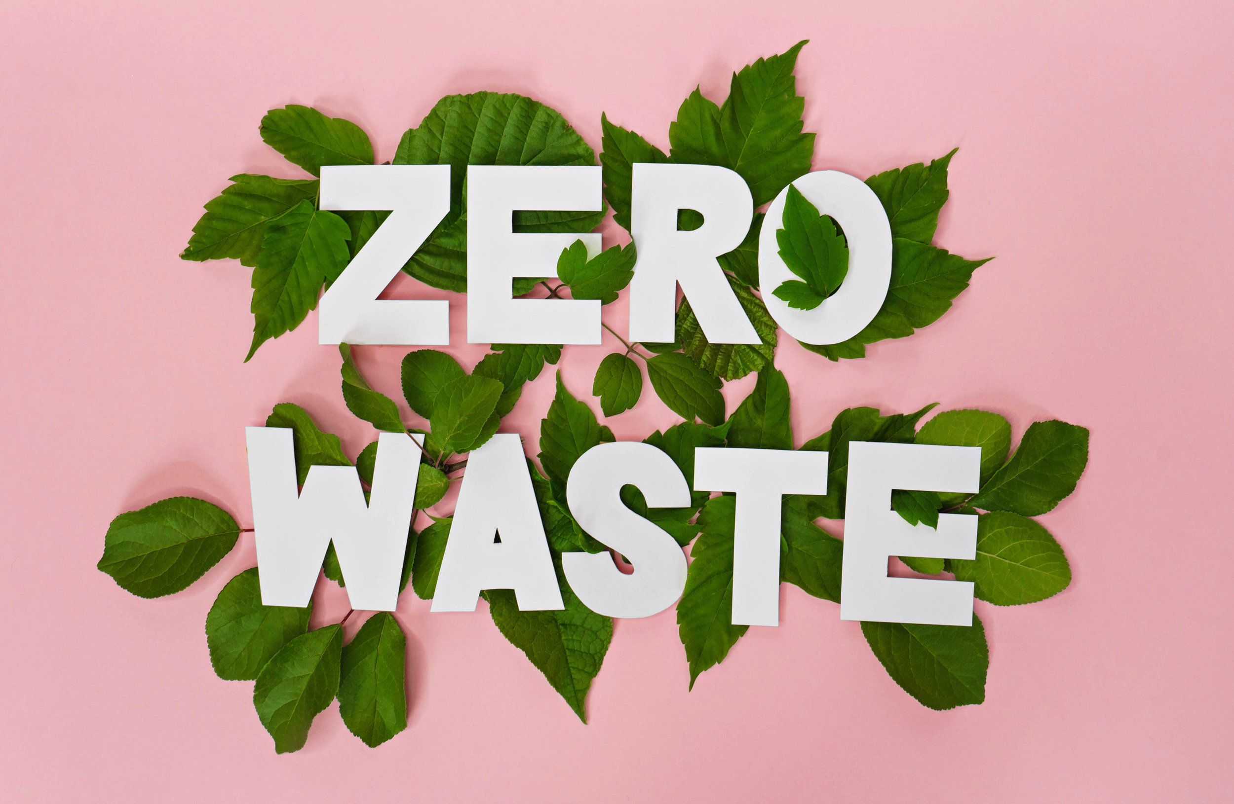 shutterstock_1123513106  - Zero Waste.jpg