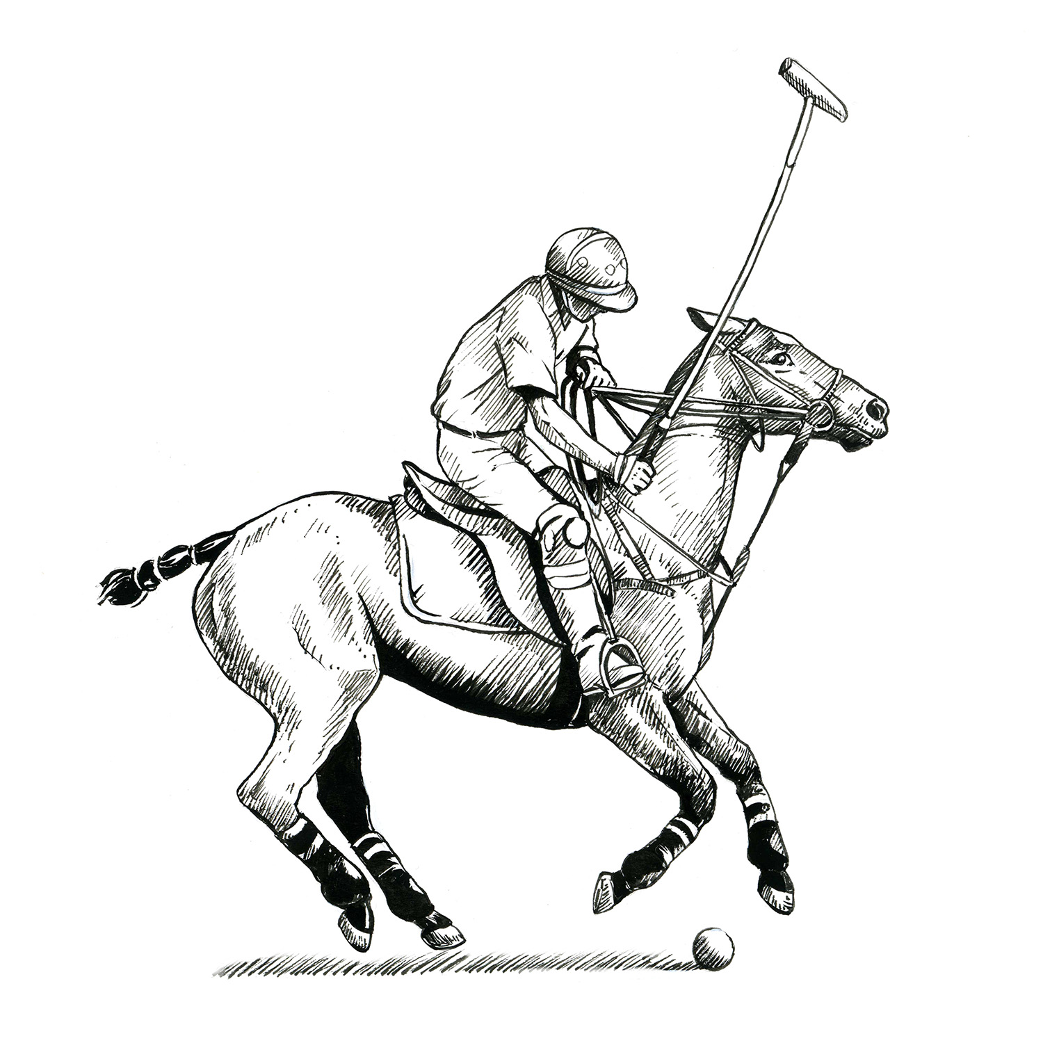Basic polo shots - Offside backhand