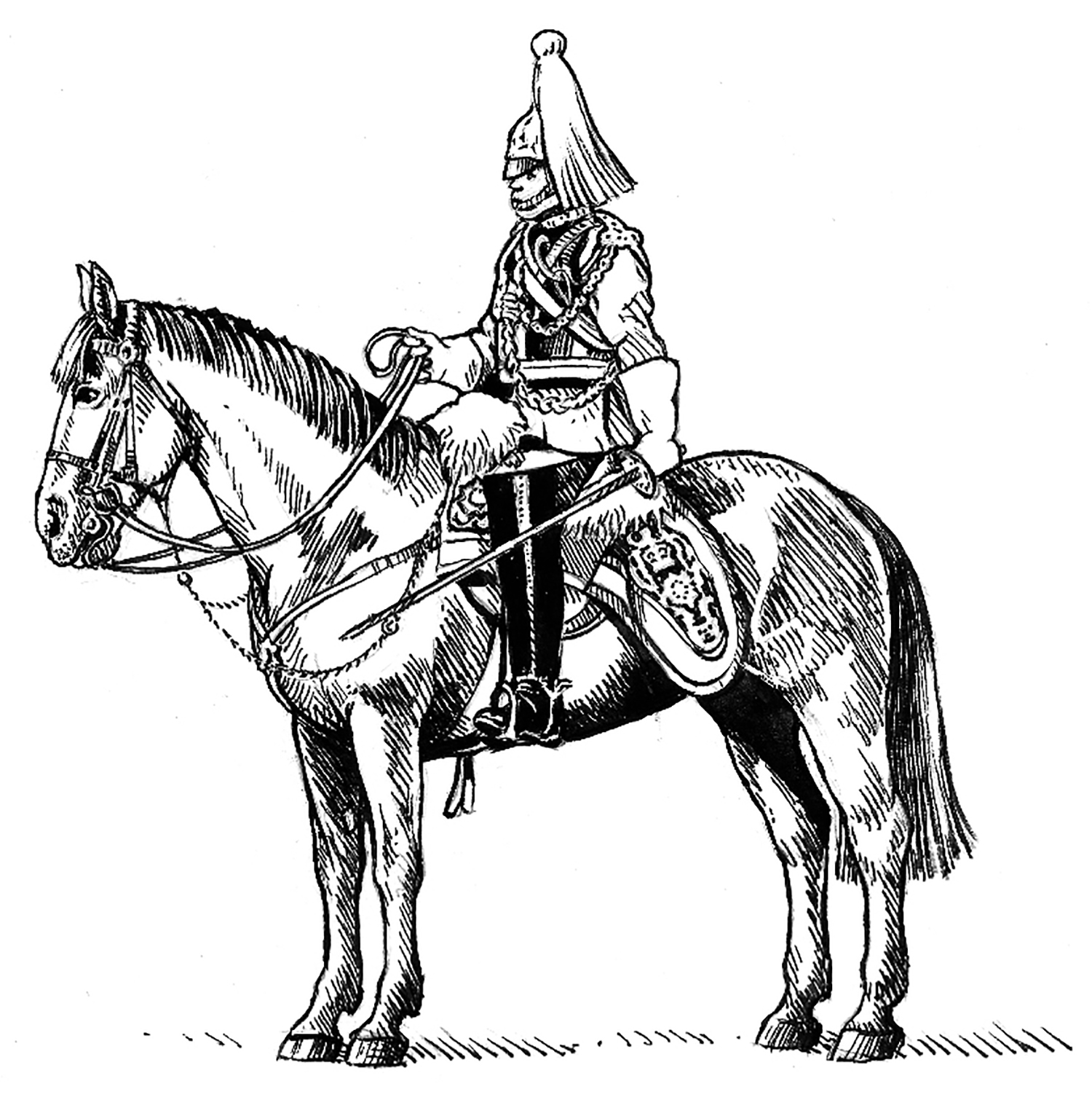 Officer Household Cavalry