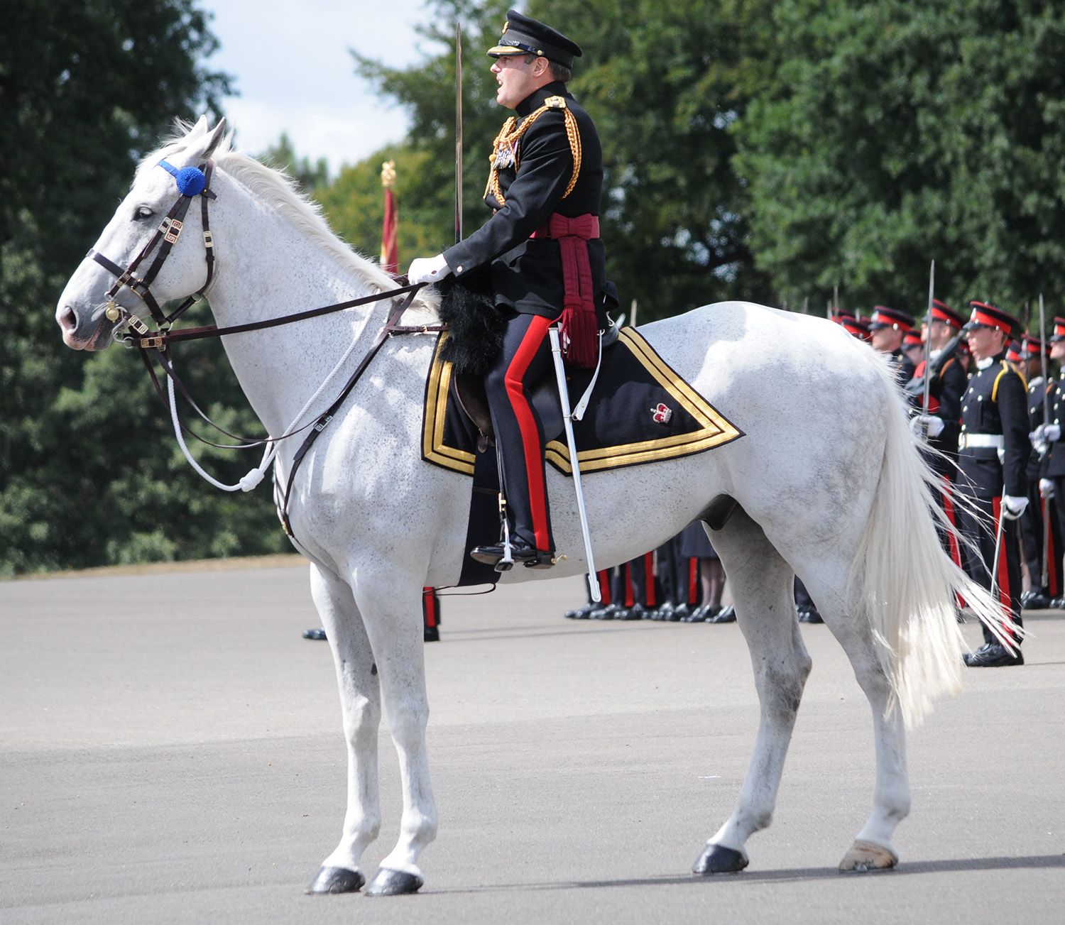 Adjutant and horse. They climb The Old College stairs at end of the parade.