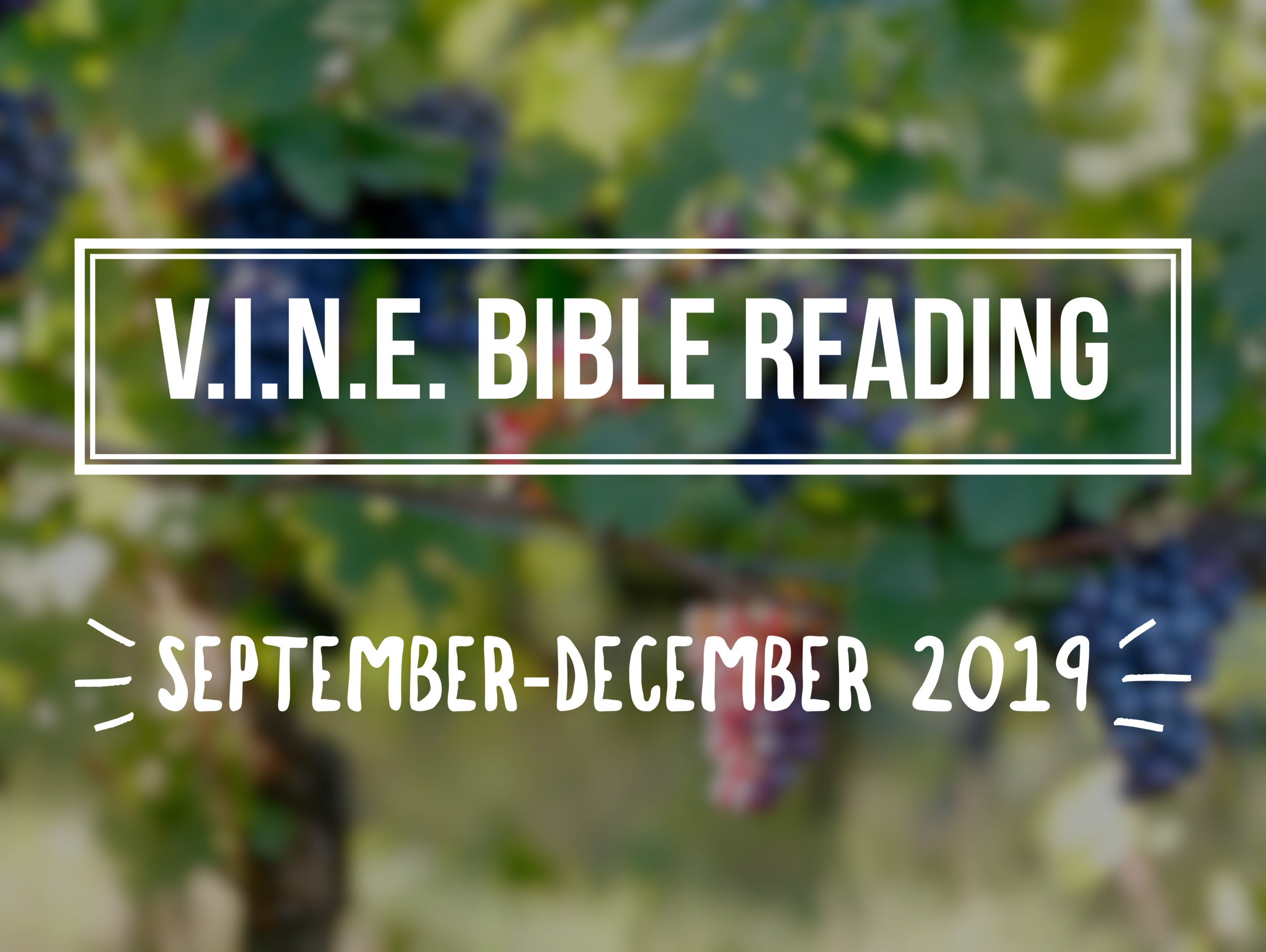 V.I.N.E. BIBLE READING - Download the V.I.N.E. Bible Reading for September-December 2019! Click the button below to get started!
