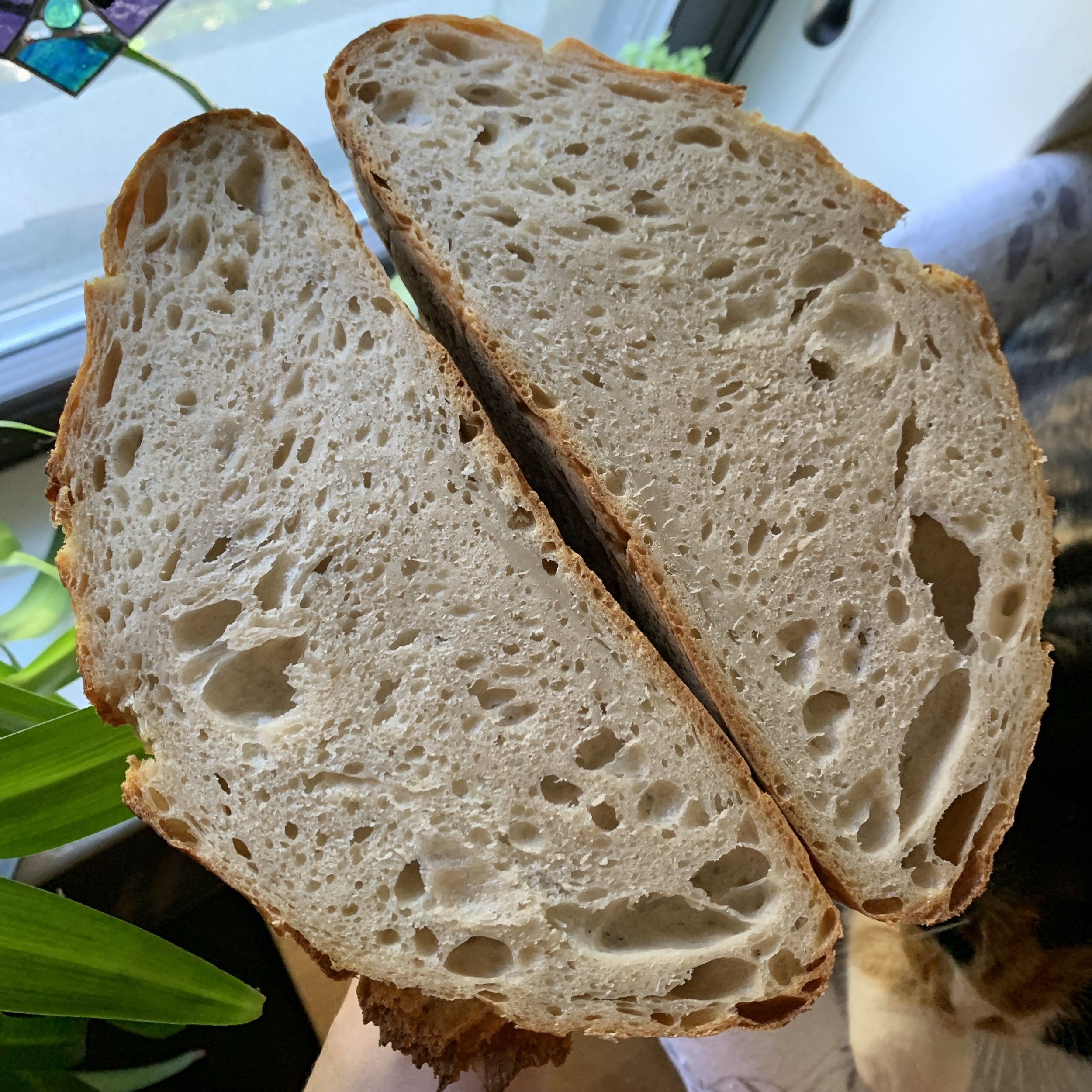 This loaf is made from 750g unbleached white flour and 250g whole wheat flour.