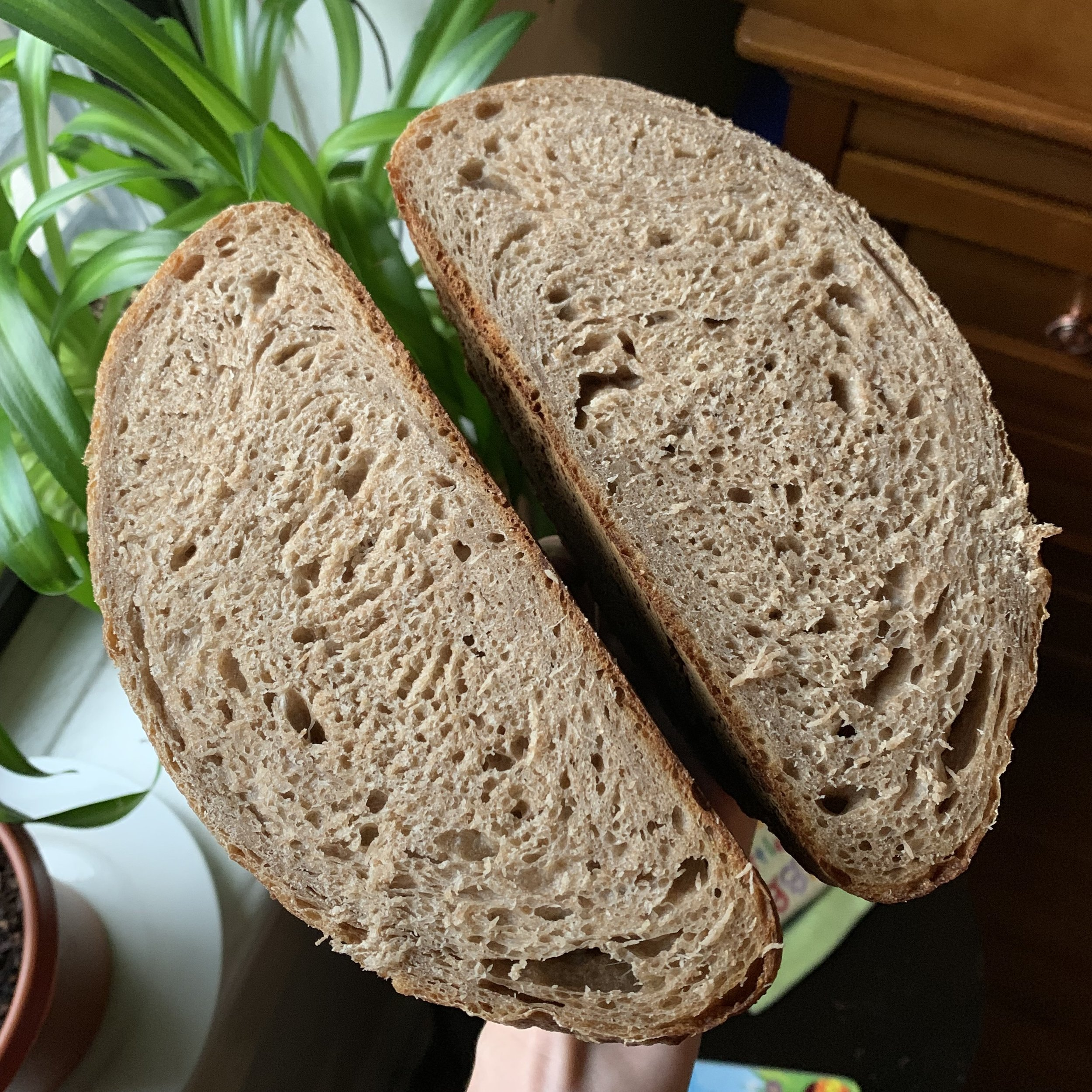 This loaf is made from 500g unbleached white flour and 500g whole wheat flour.
